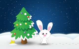White Christmas Rabbit Picture for Android, iPhone and iPad