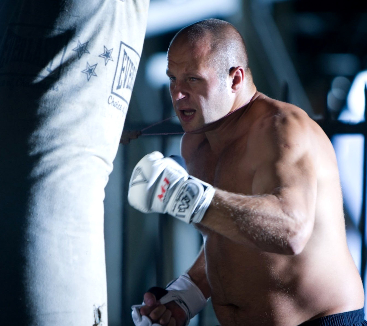 Screenshot №1 pro téma Fedor The Last Emperor Emelianenko MMA Star 1440x1280