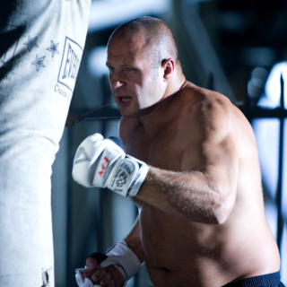 Fedor The Last Emperor Emelianenko MMA Star sfondi gratuiti per iPad mini