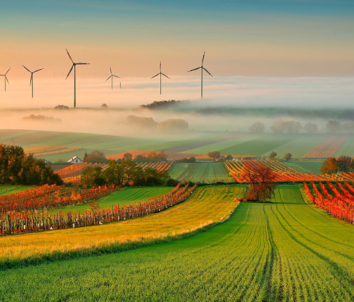 Screenshot №1 pro téma Successful Agriculture and Wind generator 1200x1024