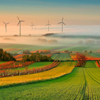 Kostenloses Successful Agriculture and Wind generator Wallpaper für 320x320