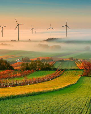 Successful Agriculture and Wind generator Background for Nokia Asha 306