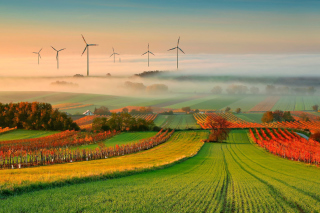 Kostenloses Successful Agriculture and Wind generator Wallpaper für Samsung Galaxy S6