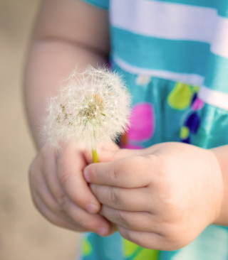 Little Girl's Hands Holding Dandelion sfondi gratuiti per iPhone 6