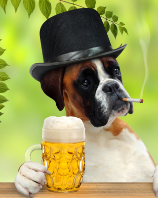 Dog drinking beer Background for 240x320