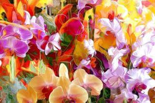 Beautiful flower drawn by oil color on canvas Wallpaper for Android, iPhone and iPad