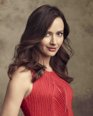 Amy Acker Brunette Wallpaper for Nokia C1-01