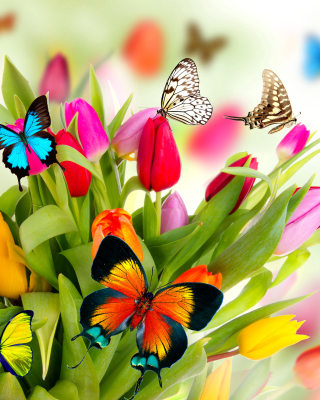Tulips and Butterflies sfondi gratuiti per Samsung Dash