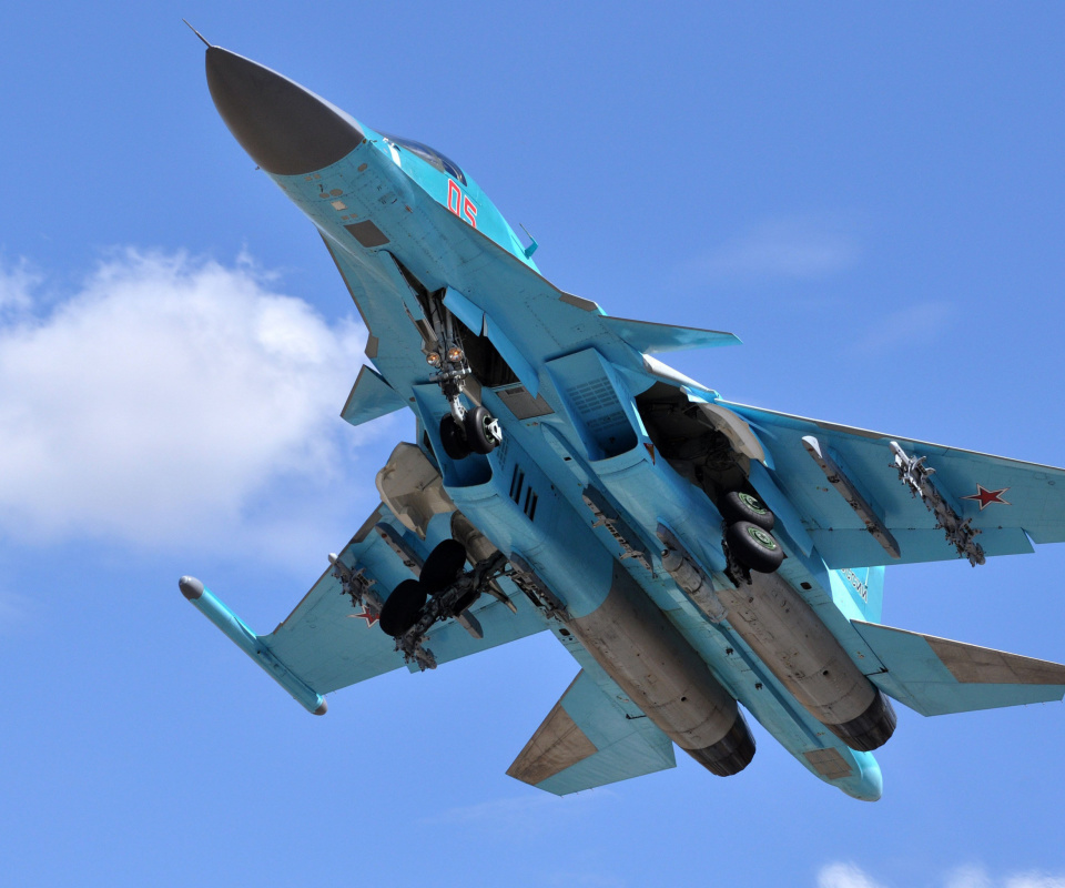 Screenshot №1 pro téma Sukhoi Su 34 Strike Fighter 960x800