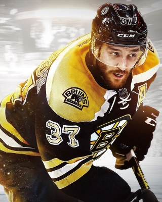 NHL Boston Bruins sfondi gratuiti per Nokia X2-02