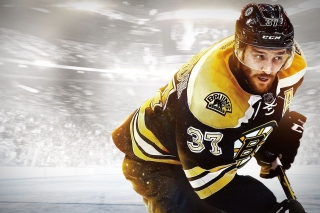NHL Boston Bruins - Obrázkek zdarma pro Widescreen Desktop PC 1920x1080 Full HD