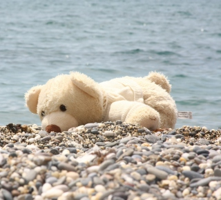 White Teddy Forgotten On Beach Wallpaper for iPad Air