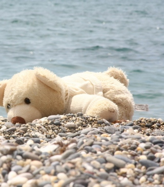 White Teddy Forgotten On Beach Background for Nokia Asha 306