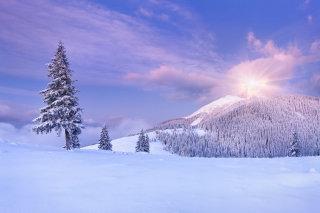 Mountain and Winter Landscape Background for Android, iPhone and iPad