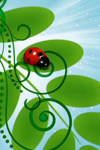 3D Ladybug para Huawei G7300