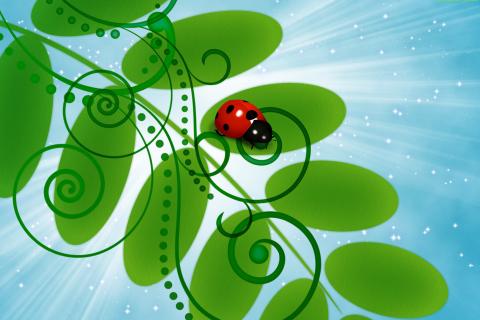 3D Ladybug para LG E400 Optimus L3