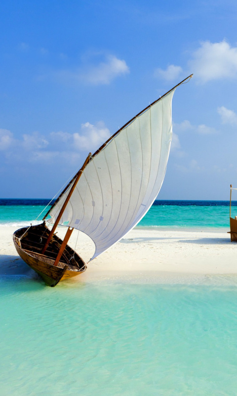 Beautiful beach leisure on Maldives wallpaper 480x800