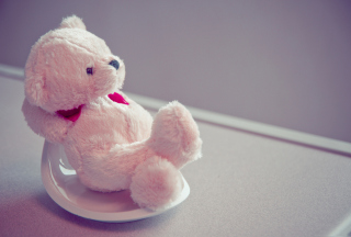 Teddy Picture for Android, iPhone and iPad