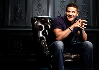 David Boreanaz Picture for Android, iPhone and iPad