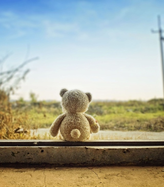 Lonely Teddy Bear Background for iPhone 4S