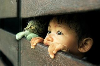 Baby Boy And His Friend Little Kitten - Obrázkek zdarma pro Widescreen Desktop PC 1440x900