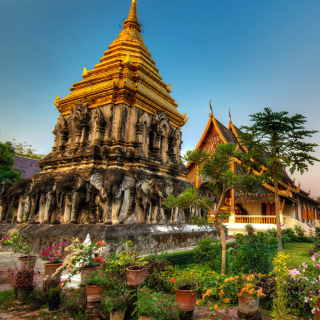 Free Thailand Temple Picture for LG KP105