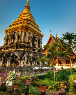Free Thailand Temple Picture for Nokia Asha 310