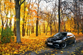 BMW 550X Autumn View Background for Android, iPhone and iPad