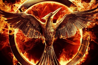 The Hunger Games Mockingjay Background for Android, iPhone and iPad