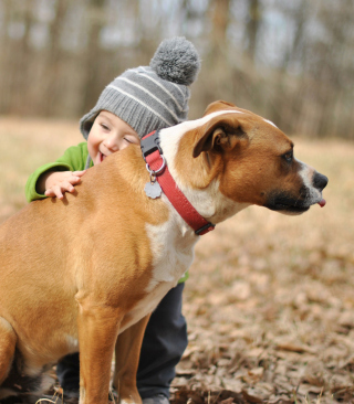 Child With His Dog Friend Wallpaper for HTC Titan