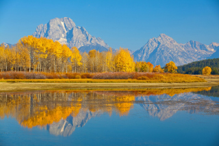 Wyoming, Grand Teton National Park Background for Android, iPhone and iPad