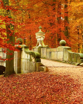 Autumn in Peterhof Wallpaper for Nokia C5-06