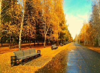 Autumn Park sfondi gratuiti per cellulari Android, iPhone, iPad e desktop