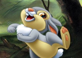 Free Thumper (Bambi) Picture for Android, iPhone and iPad