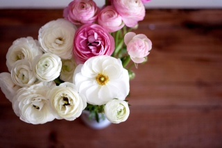 Amazing Ranunculus Bouquet Background for Android, iPhone and iPad
