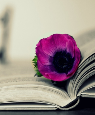 Free Purple Flower On Open Book Picture for Nokia Asha 310