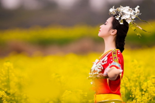 Kostenloses Asian Girl In Yellow Flower Field Wallpaper für Android, iPhone und iPad
