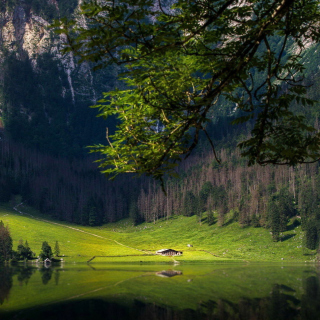 Bavarian Alps and Forest - Fondos de pantalla gratis para iPad mini 2