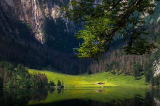 Bavarian Alps and Forest Background for Android, iPhone and iPad