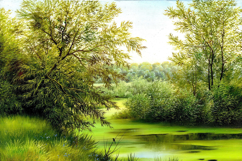 Днем, открытка лес картинки