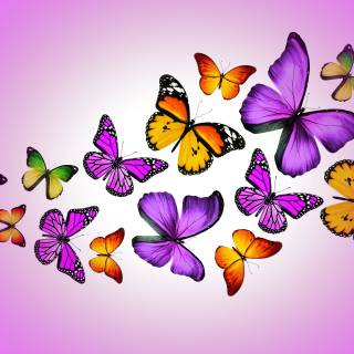 Orange And Purple Butterflies - Fondos de pantalla gratis para iPad mini 2