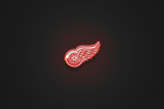 Free Detroit Red Wings Picture for Android 480x800
