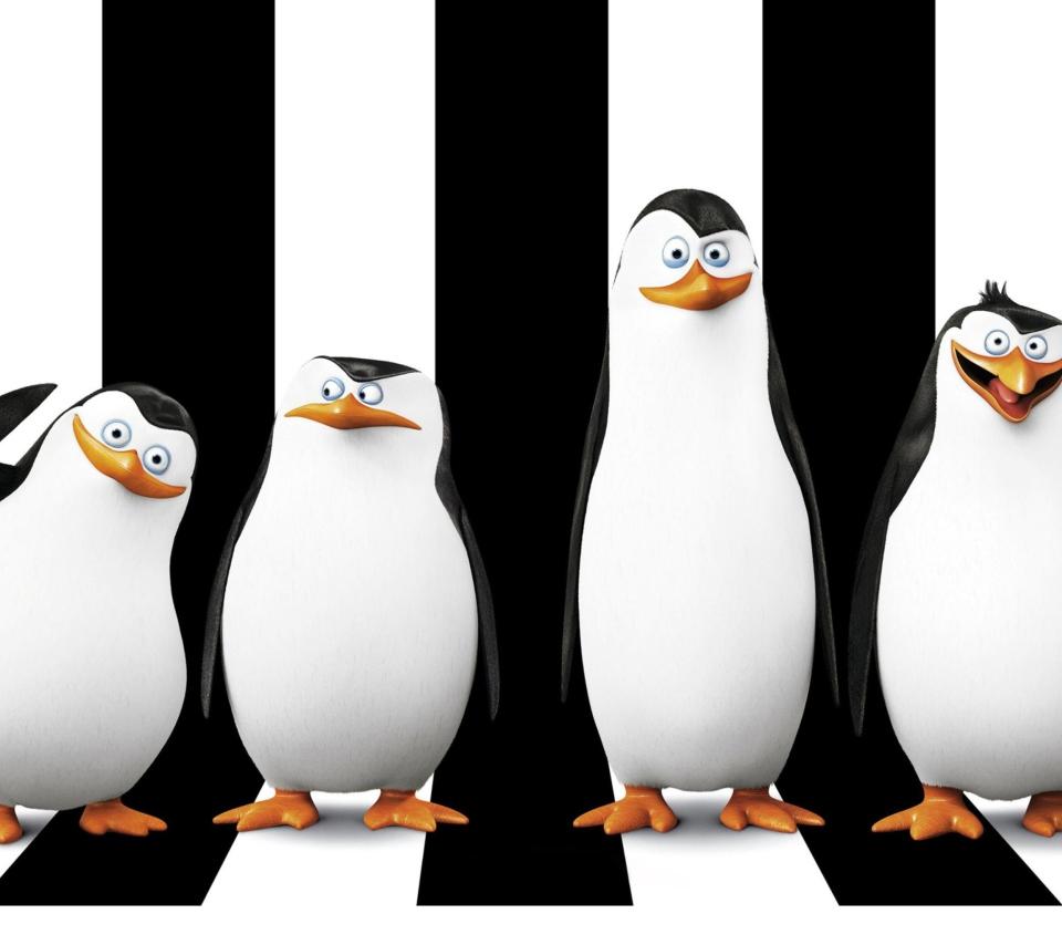 Penguins Madagascar para Sony Ericsson XPERIA Neo V