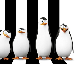 Penguins Madagascar Wallpaper for iPad mini