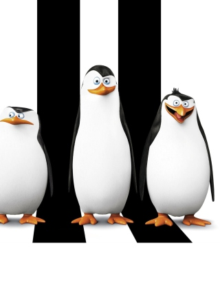 Картинка Penguins Madagascar на Nokia Asha 309