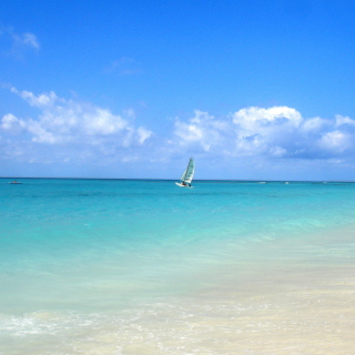 Sailing In Paradise Background for 208x208