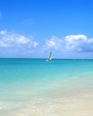 Free Sailing In Paradise Picture for Nokia C2-02