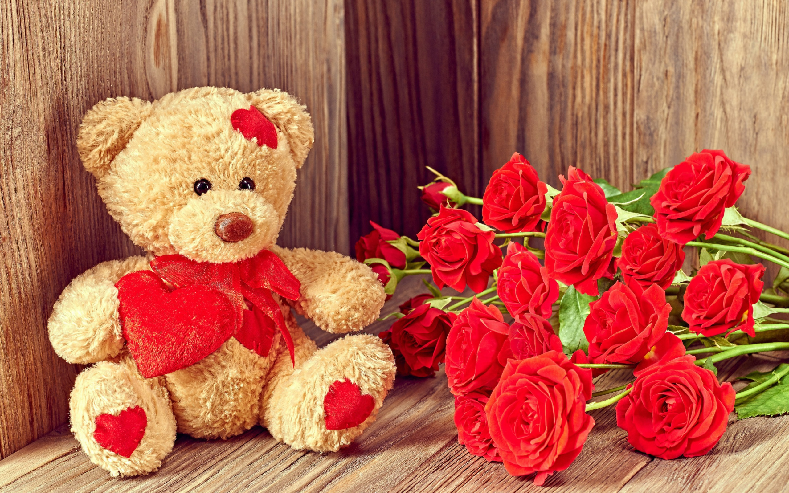 Brodwn Teddy Bear Gift for Saint Valentines Day wallpaper 2560x1600