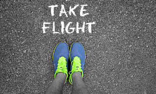 Take Flight Background for Android, iPhone and iPad