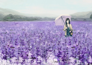Girl With Umbrella In Lavender Field Background for Android, iPhone and iPad